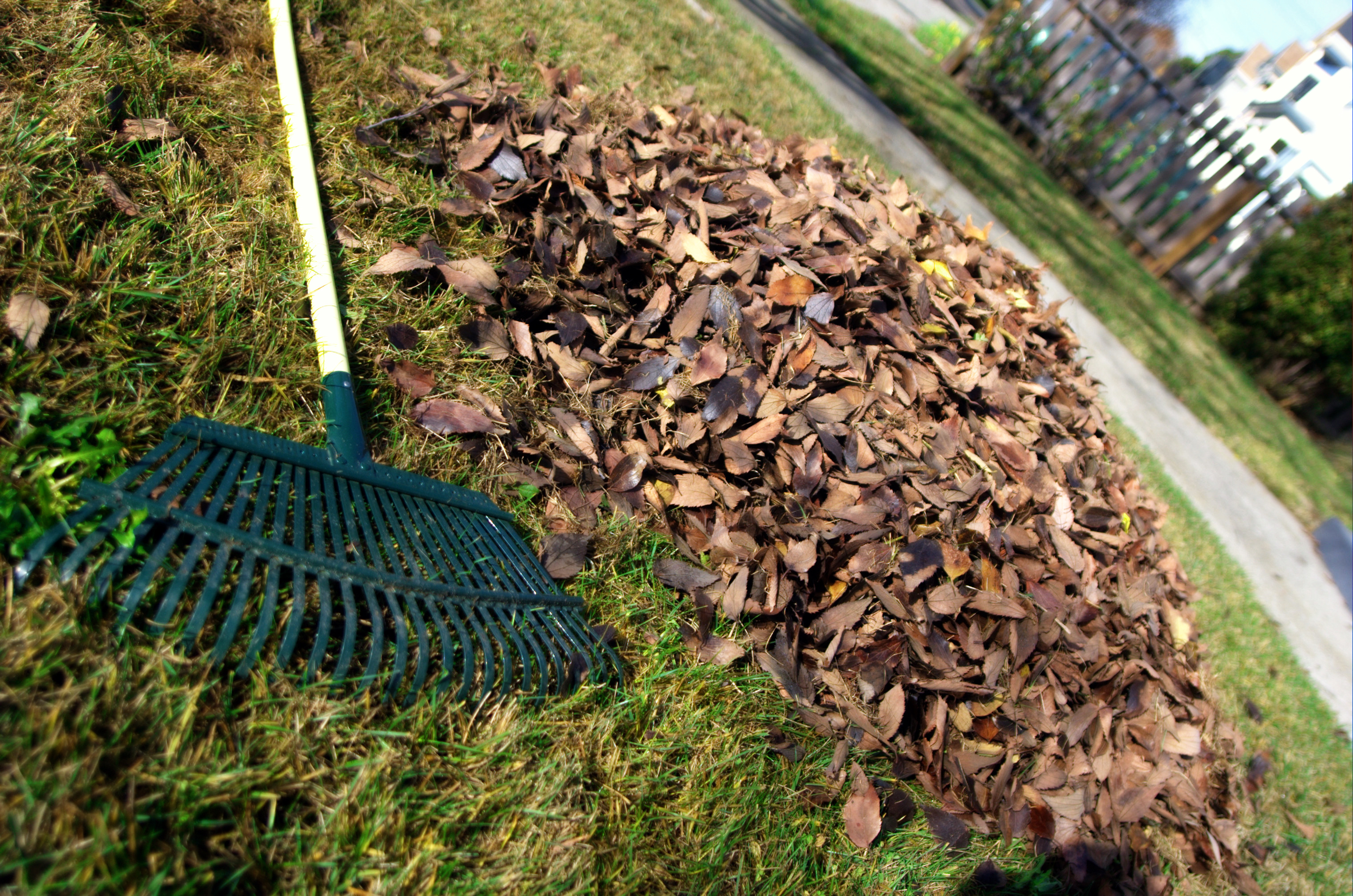 How do you sign up for yard waste pickup?