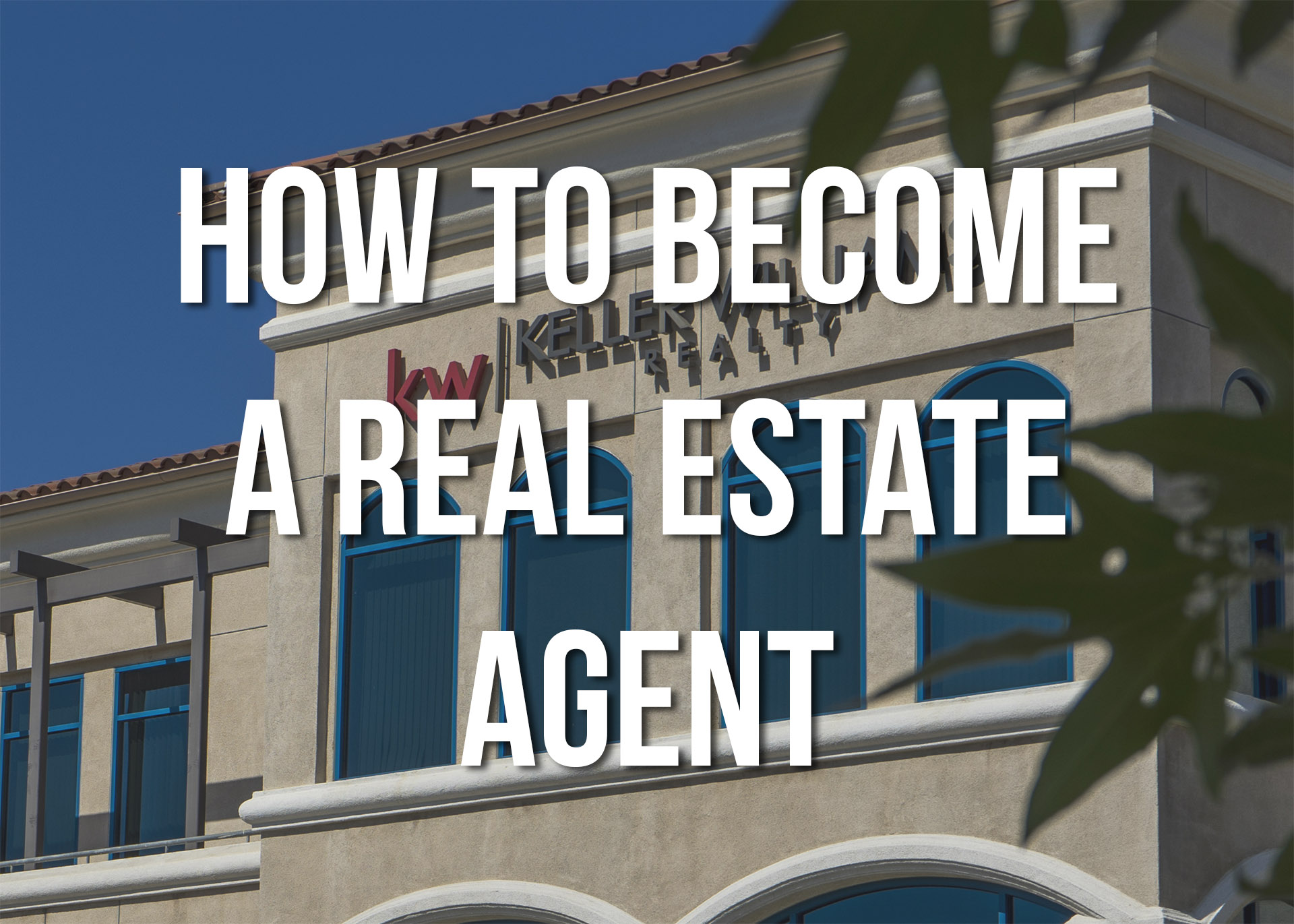 Real Estate Agent Education Requirements - The Best Education 2017