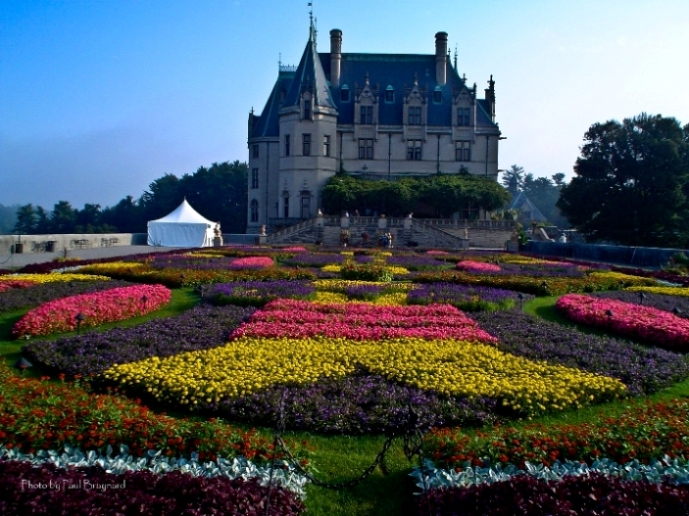 Asheville Must See: Spring Blooms At Biltmore!