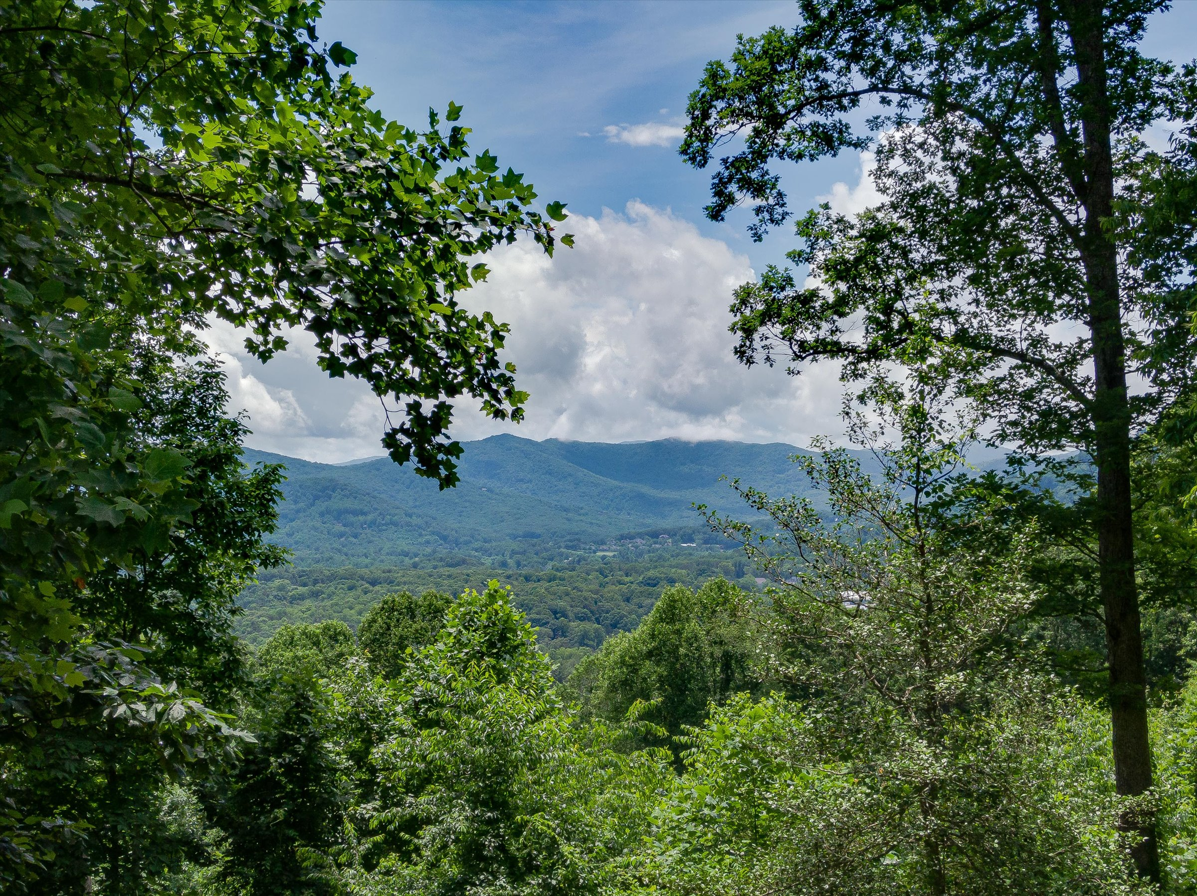 Outstanding Arden Homesite with Long-Range Mountain Views