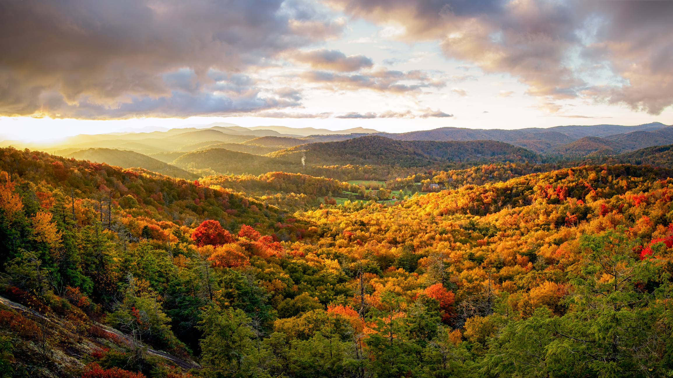Best Hiking Trails Close to Asheville