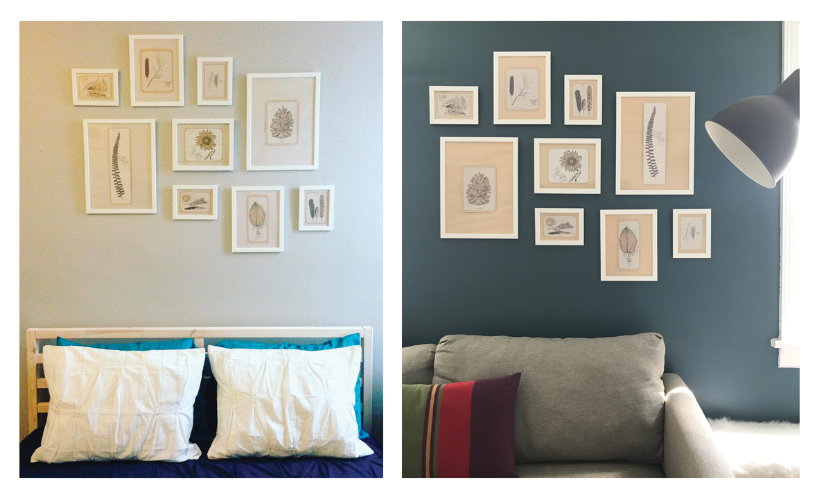 gallery wall paint color