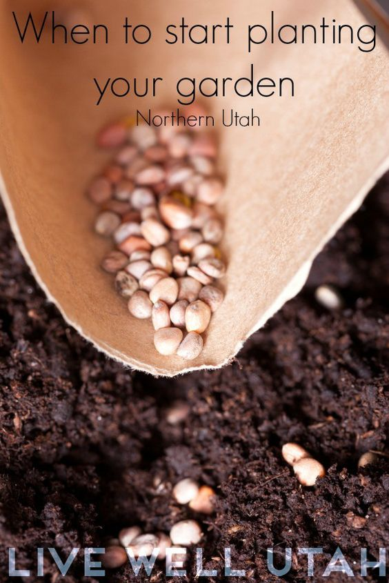 When to Start Planting Your Garden (Northern Utah)