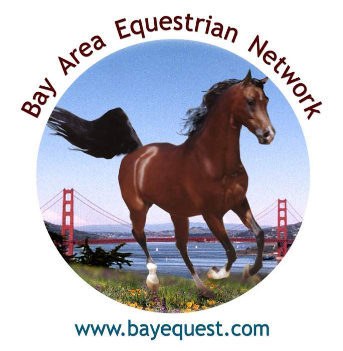 Bay Area Equestrian Network