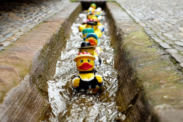 Ducks in a row to buy a house