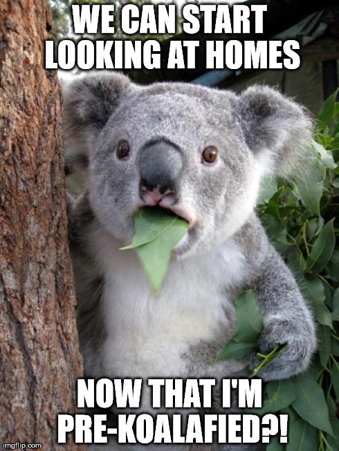 Fun meme: pre-qualification for real estate