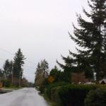 N Olson Road NW