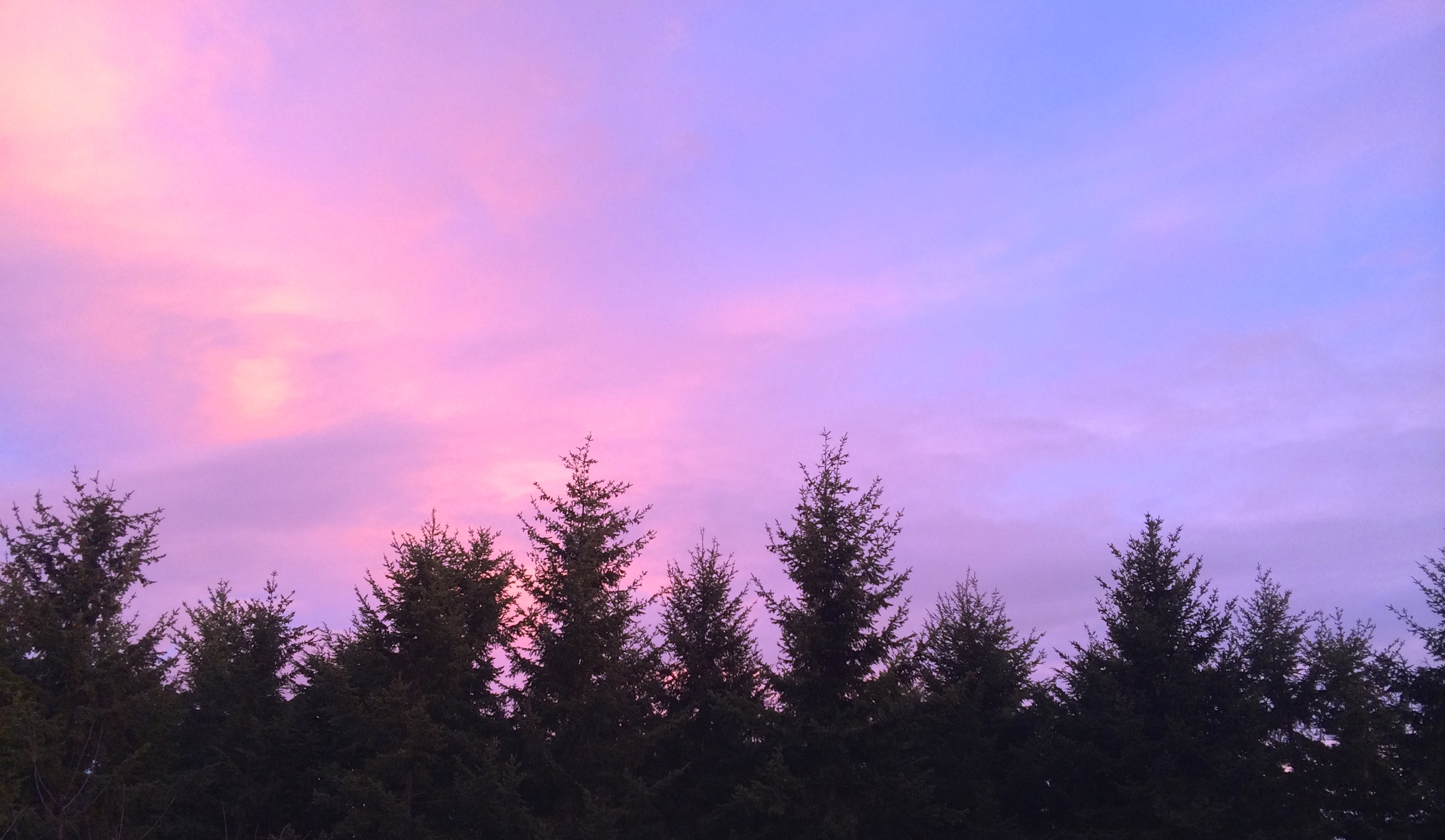 Pink Sky in Sequim