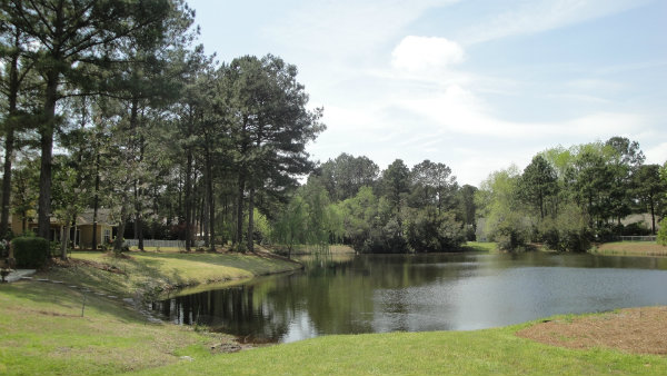 Villas And Townhomes For Sale In Columbia Sc