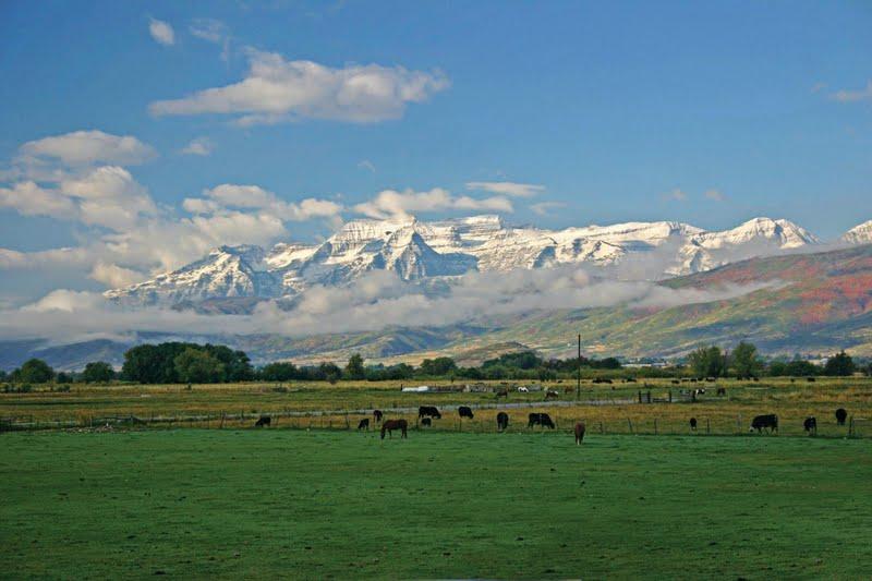 Utah River Property For Sale