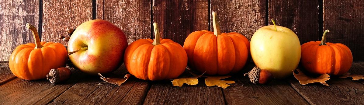 Mini Pumpkins Banner