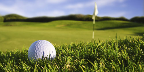 Search Golf Properties in the Upstate