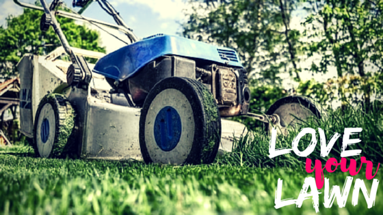 Love Your Lawn