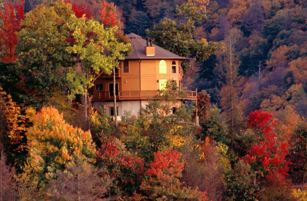 maggie valley zip code
