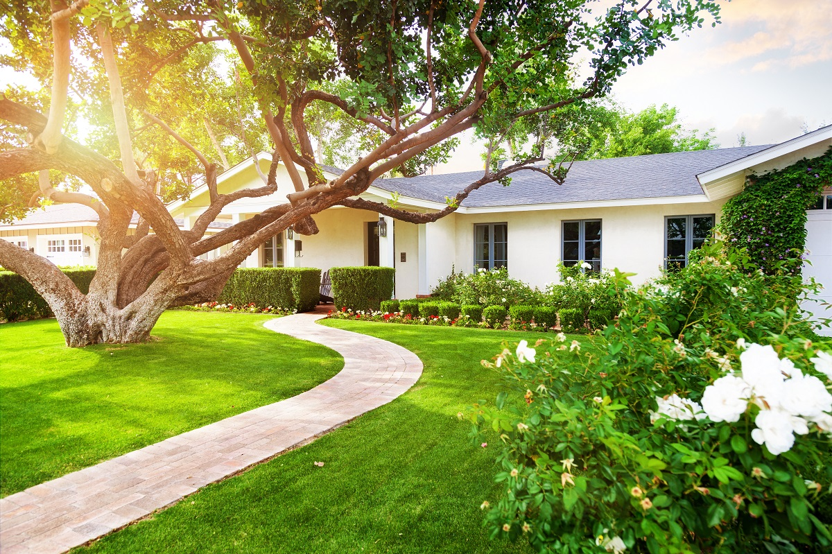 an attractive landscape attracts buyers