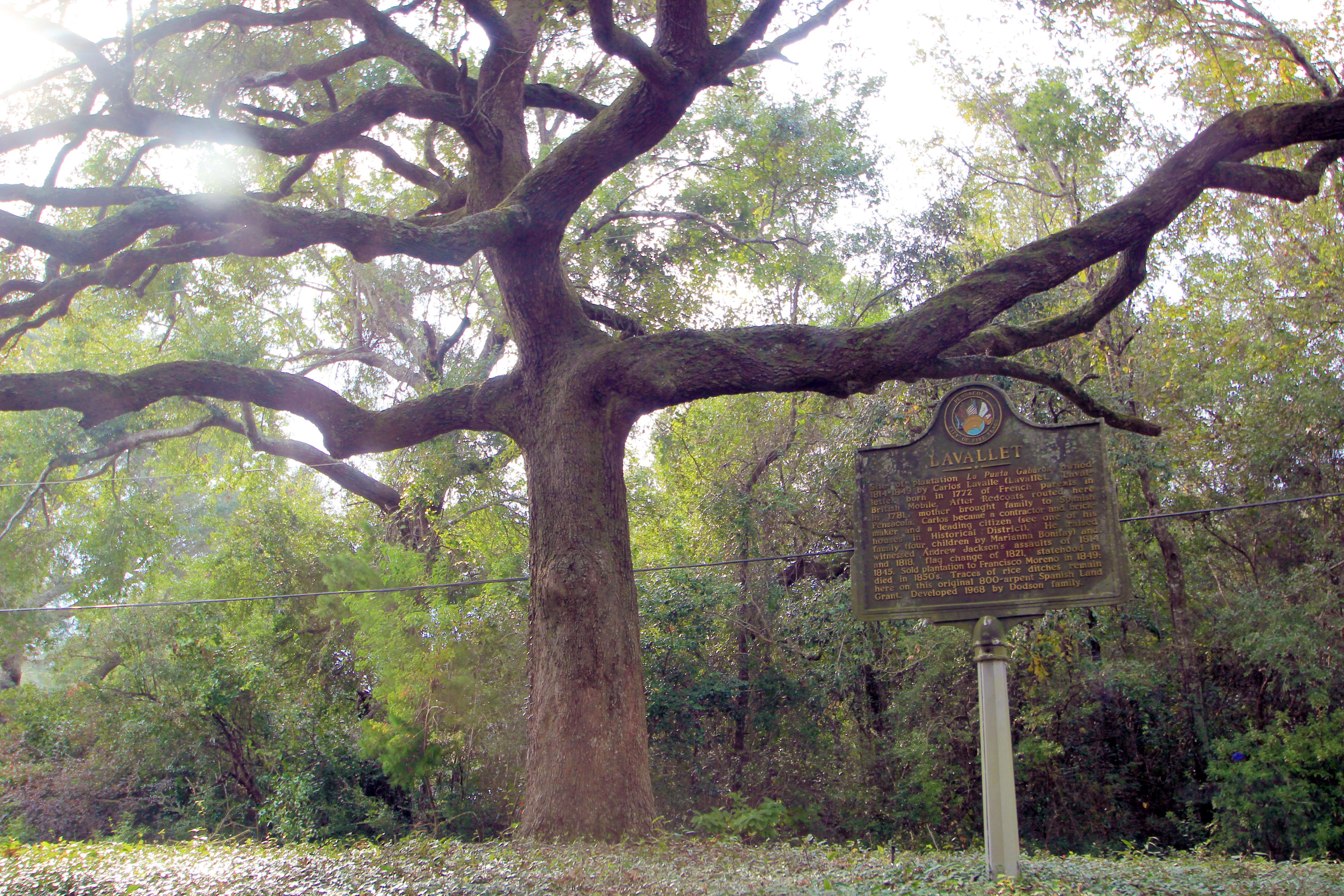 Lavallet history marker