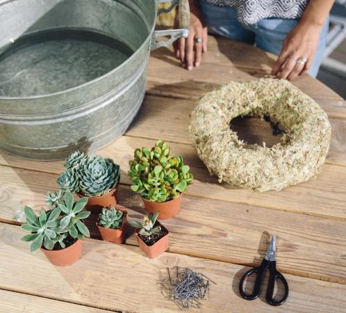 Living Succulent Wreath Instructions