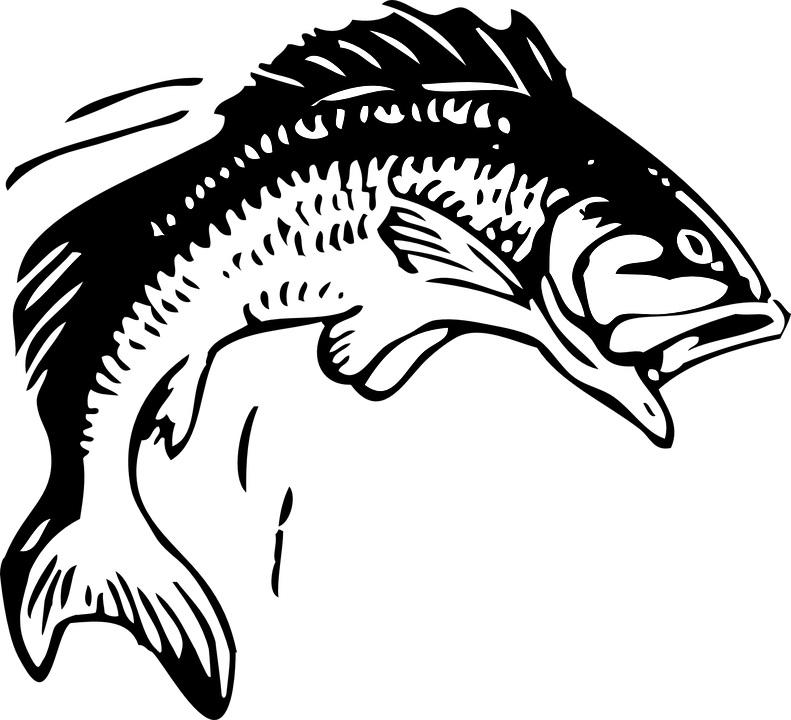 38th Annual Huck Finn Fishin' Derby in Simi Valley