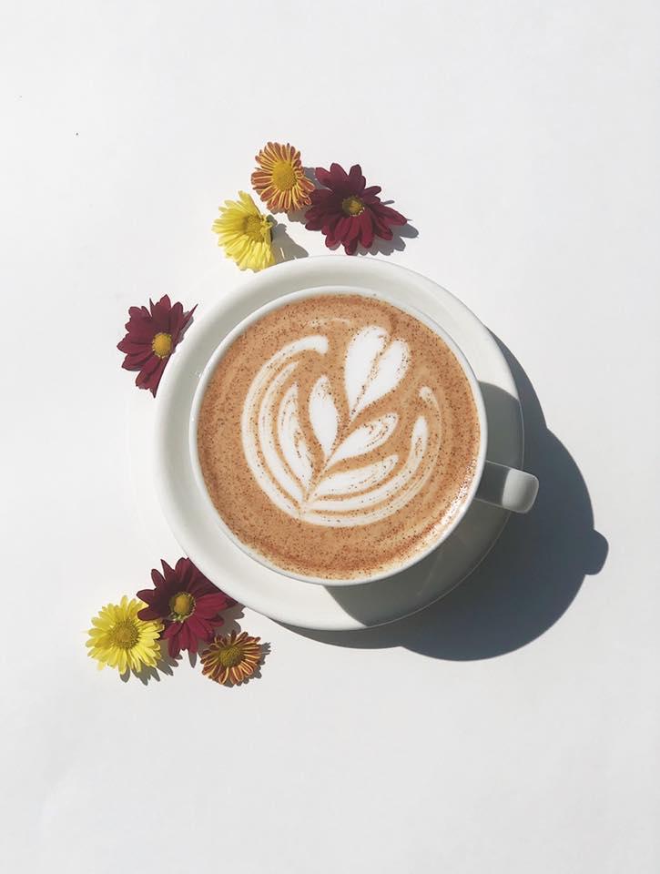 Living Raleigh Durham Pumpkin Spice Latte Feature: Sola Coffee Cafe Pumpkin Honey