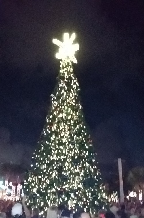 Greater Fort Lauderdale Tree Lighting Events
