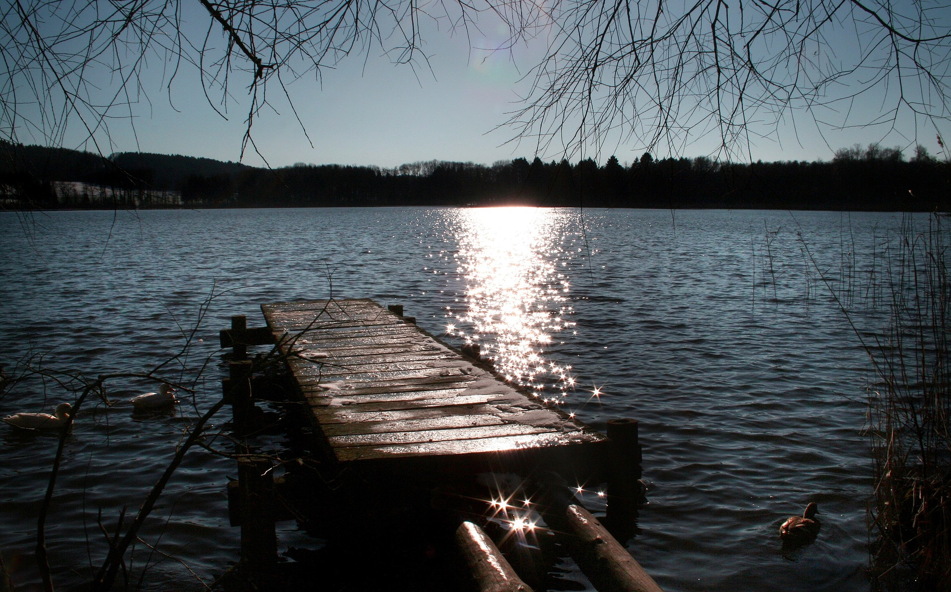 So You Want to Build a Dock in New Jersey - English Properties