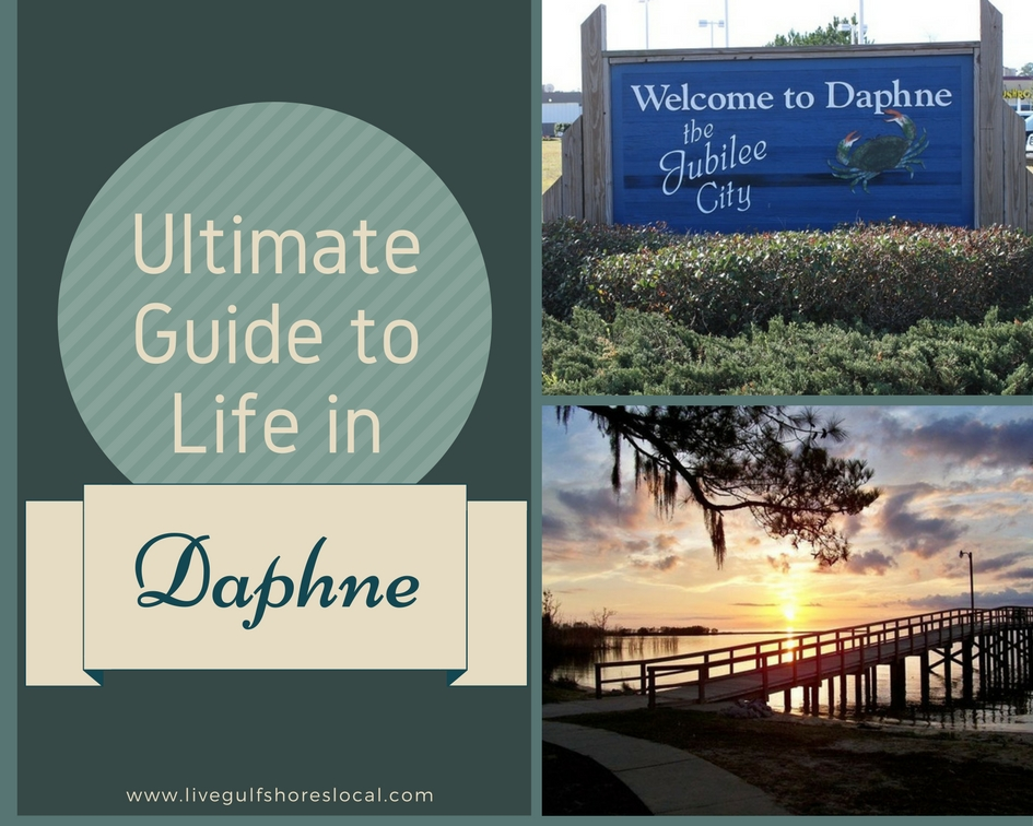 Daphne Ultimate Guide