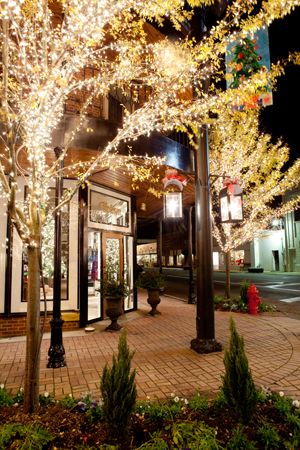 Fairhope Downtown Lights