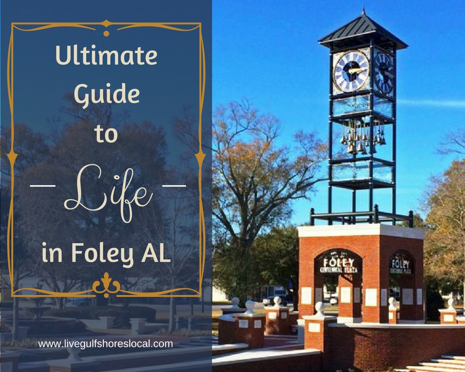 Ultimate Guide to Life in Foley