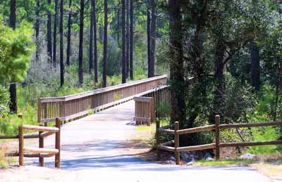 Orange Beach Backcountry Trail