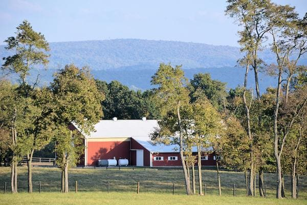 Clarke County - Atoka Properties