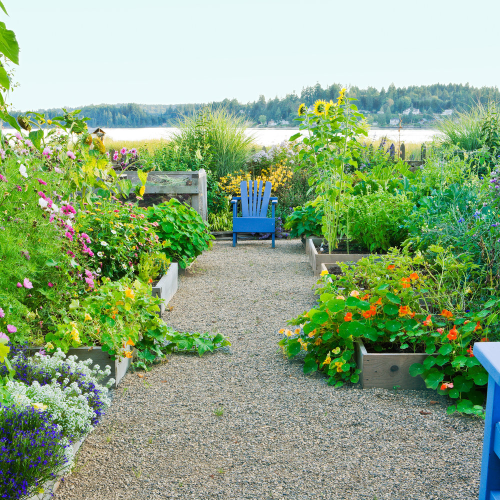 Summer Landscaping id-buy real estate landscaping ideas