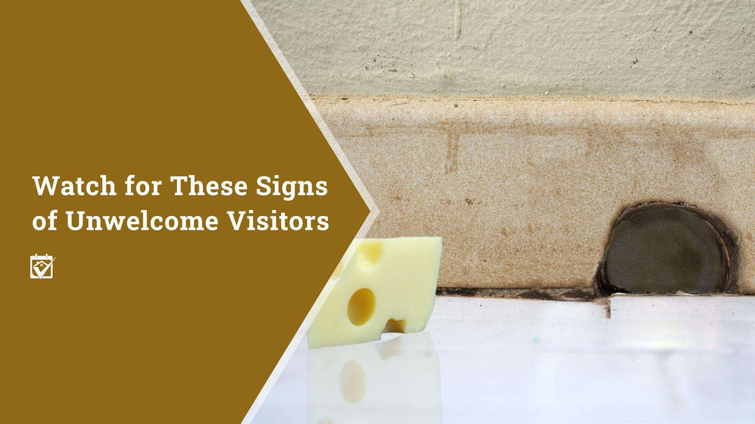 Watch for These Signs of Unwelcome Visitors