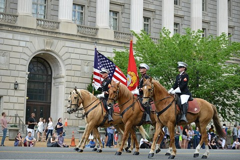 Memorial Day 2021 in Arlington, VA
