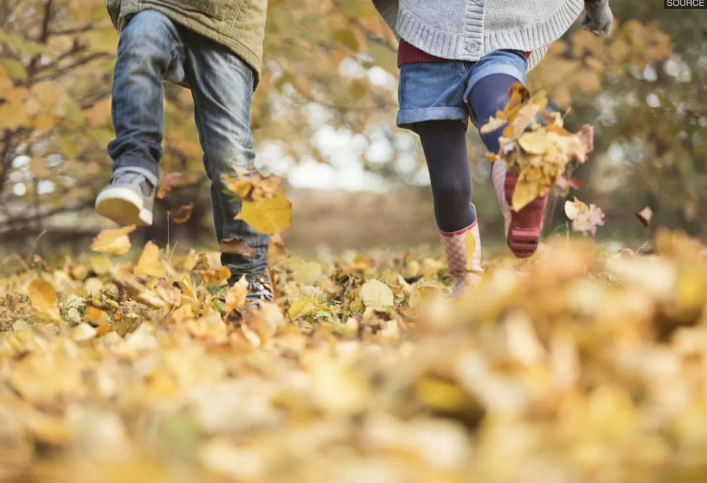 Ways to build community in your neighborhood this fall.