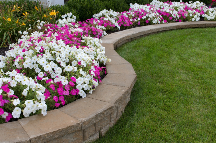 4 Landscaping Tips to Avoid | Lydia Homeier, RE/MAX Agent