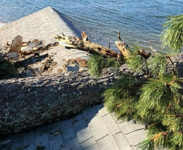 Giant Tree fallen on house roof in Cape Cod