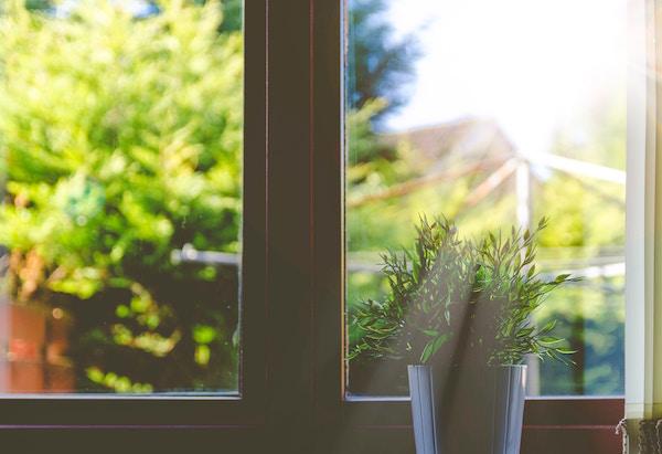 A very nice clean window