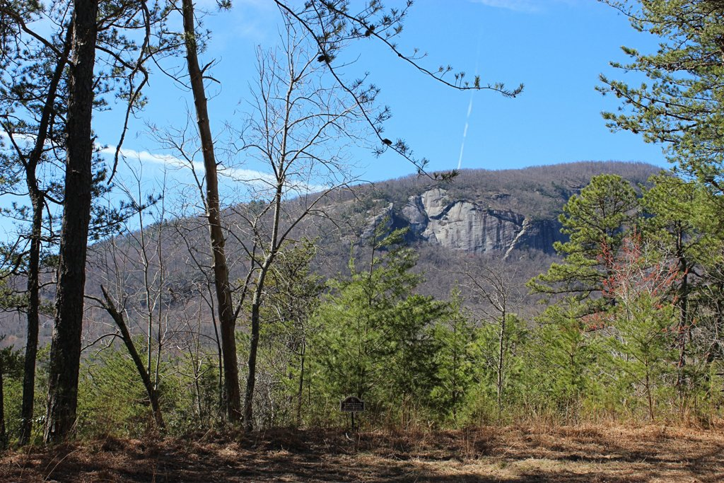 Lake Lure NC: Lot 39 Palmer Place at Rumbling Bald Resort