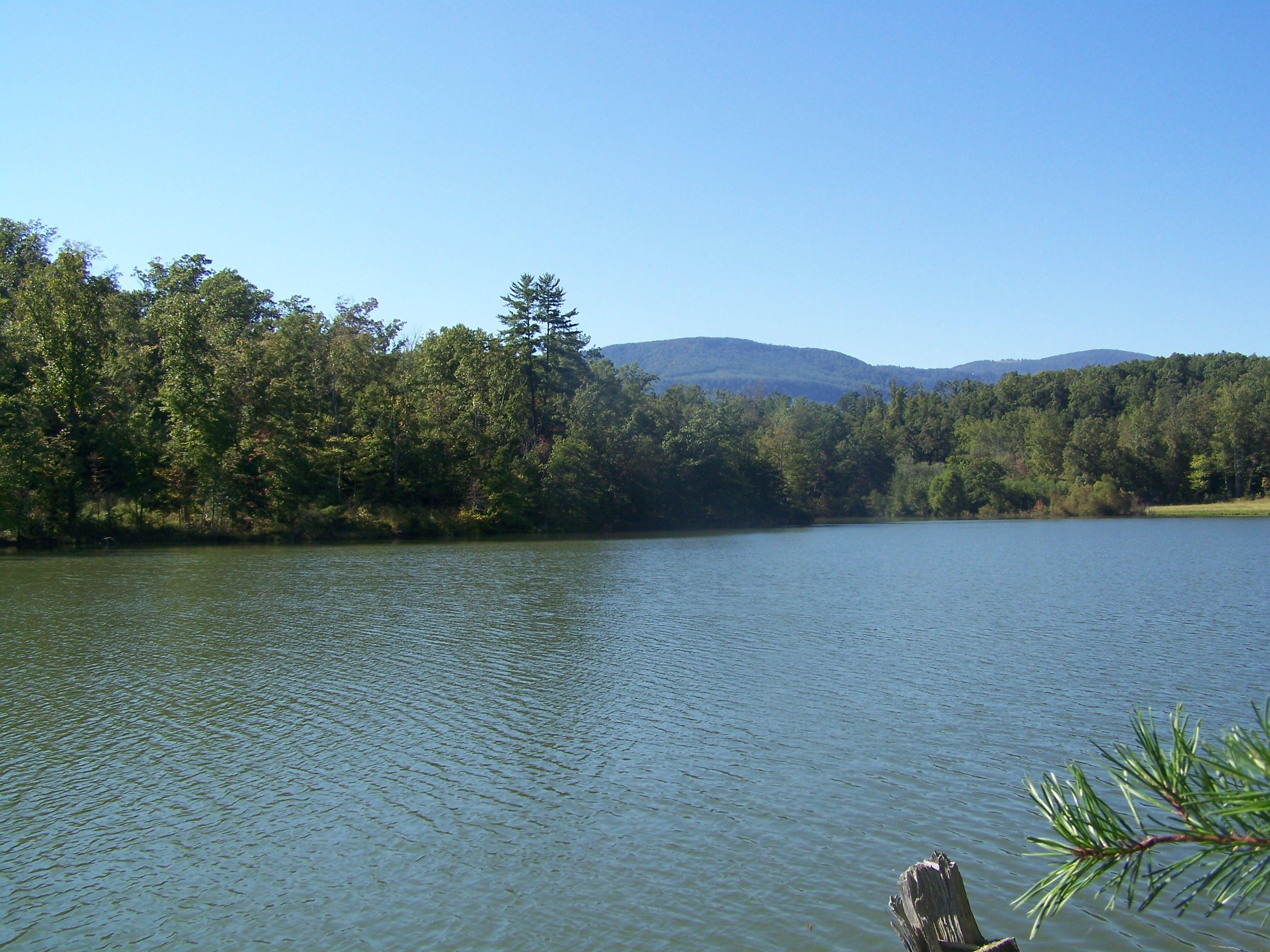 Lake Adger Lakefront Lot For Sale