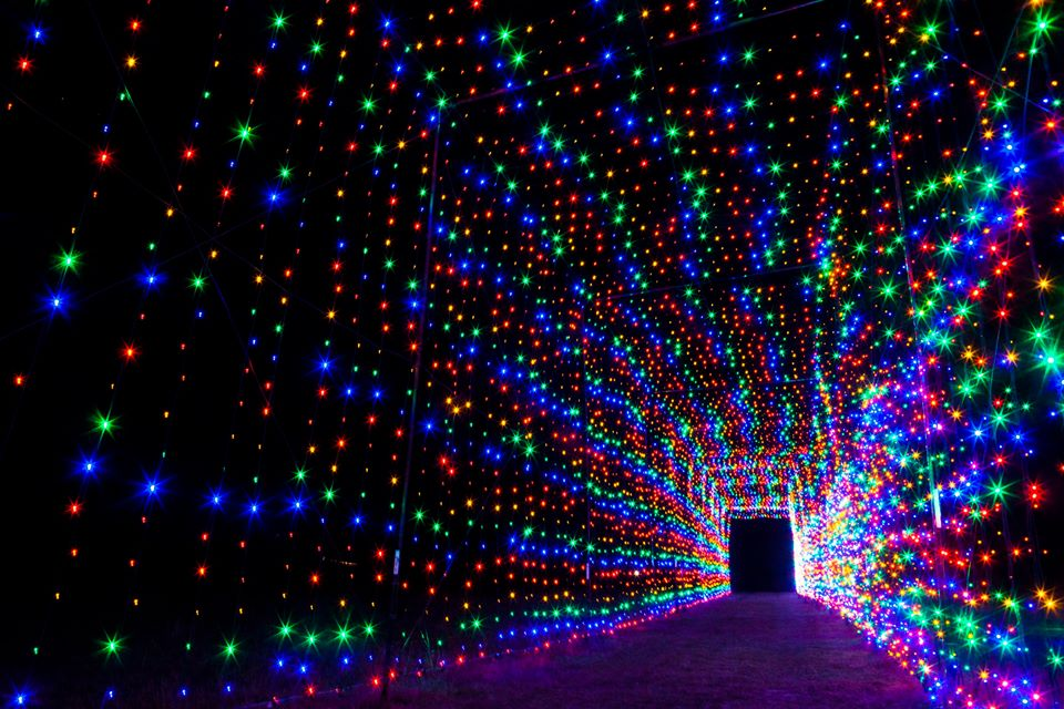 Best Places to See Christmas Lights in San Antonio Don Strange Ranch