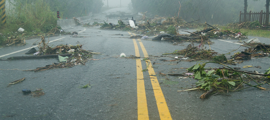 severe weather damage