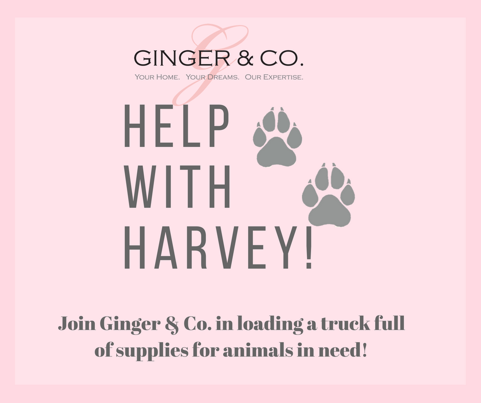 Join Ginger & Co as we Help with Harvey! - Ginger & Co