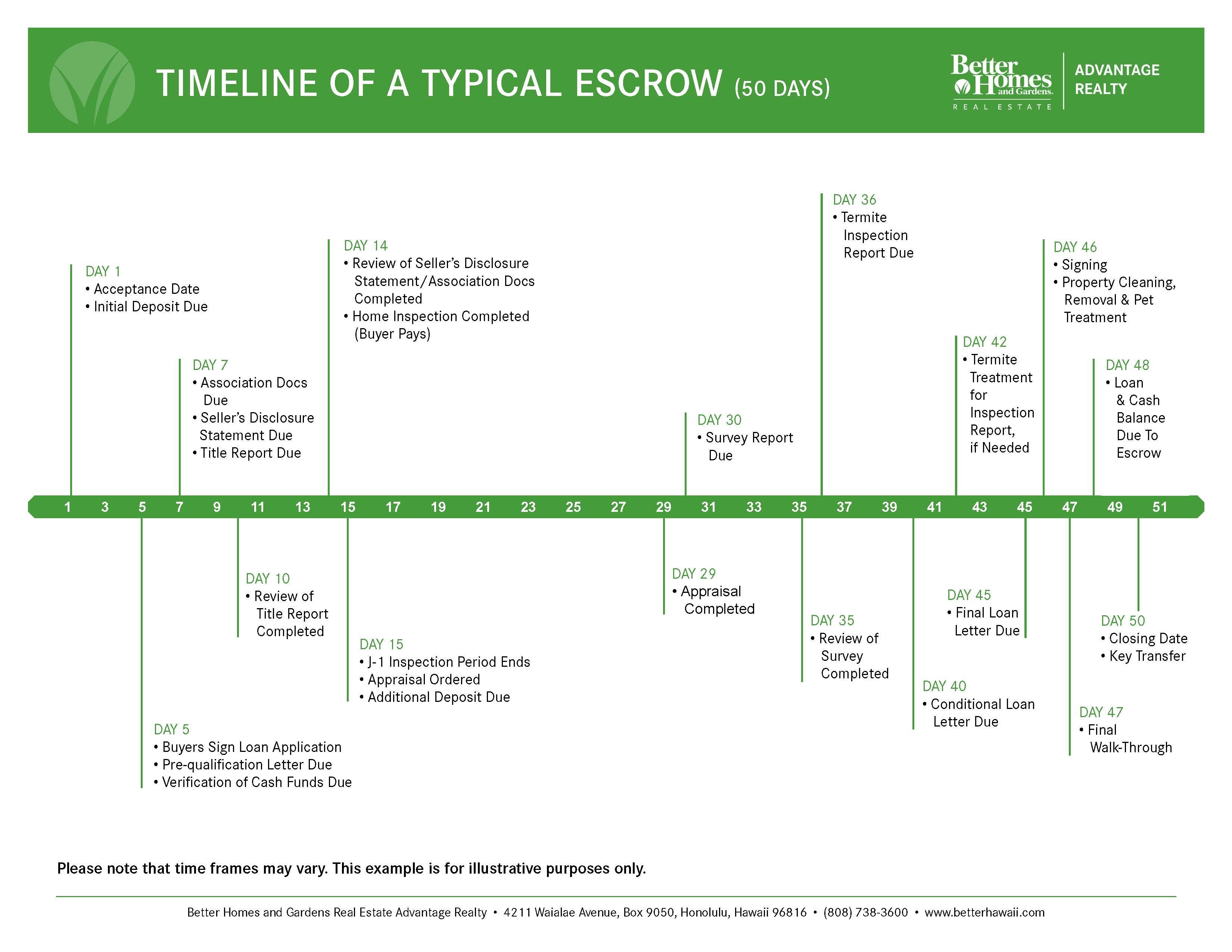 timeline timeline